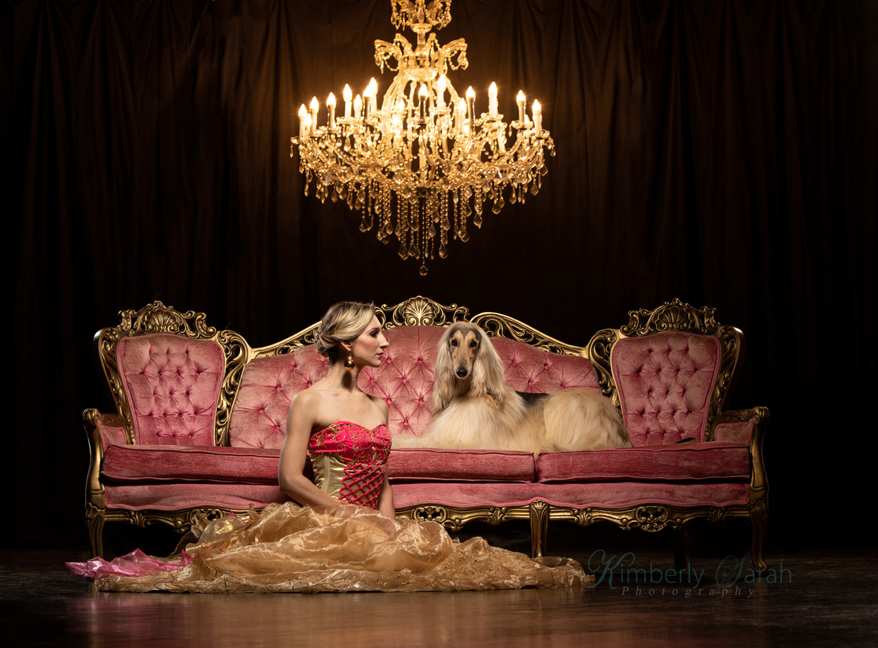 editorial, high fashion, dog photography, kimberly sarah photography, new england